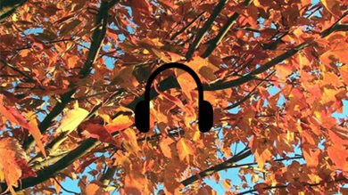 Autumnal Playlist